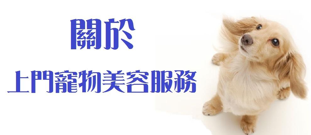 上門寵物美容服務about